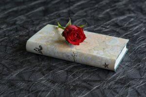 Emanuele Gentili selezione poesie